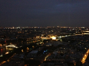 View from middle of the Eiffel Tower